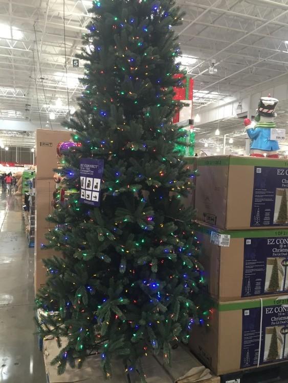 Pre Lit Led Ez Connect Dual Color Chrismas Trees At Costco