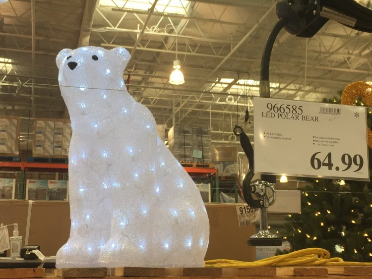 LED Polar Bear at Costco