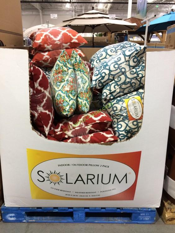 Solarium Indoor/Ourdoor 2-Pack Decorative Pillow