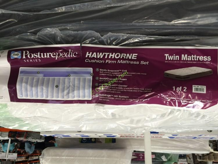 Sealy Hawthorne Twin Cushion Firm Mattress Set