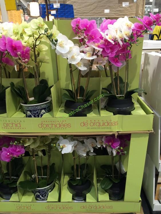 Beaumont Designs Artificial Orchid Assortment Costcochaser