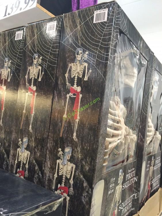 Costco 998101 60 Pirate Skeleton With Parrot Box