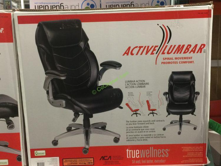 Costco-733288-True-Innovations-Active-Lumbar-Chair-box
