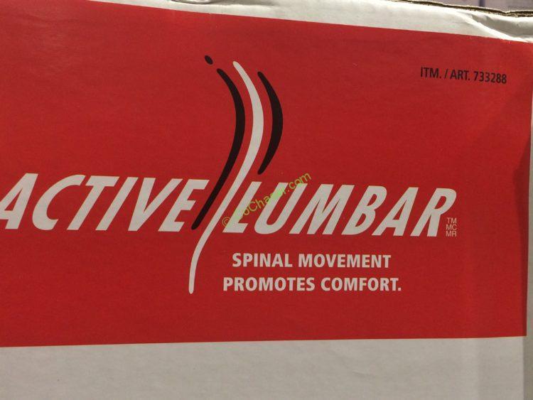Costco-733288-True-Innovations-Active-Lumbar-Chair-spec3