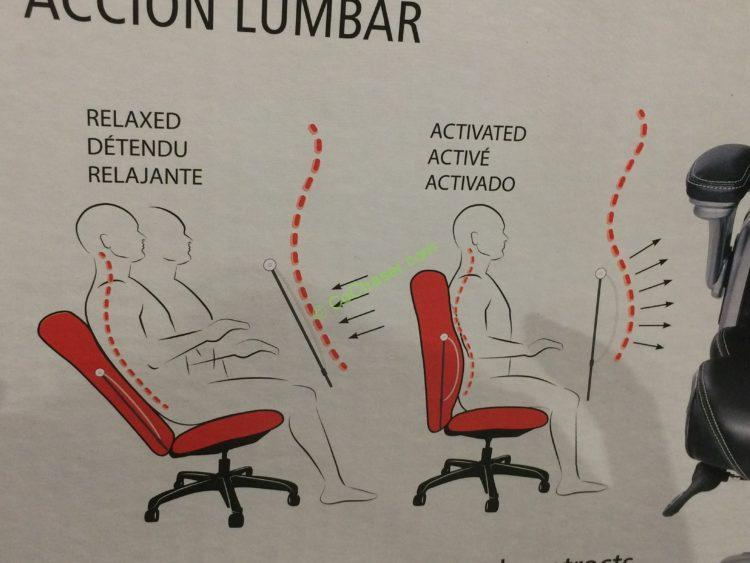 Costco-733288-True-Innovations-Active-Lumbar-Chair-way