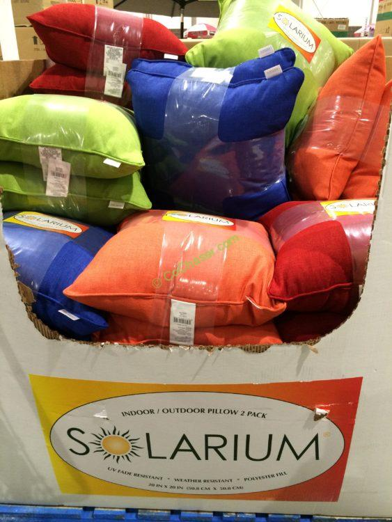 Solarium Indoor Ourdoor 2 Pack Decorative Pillow
