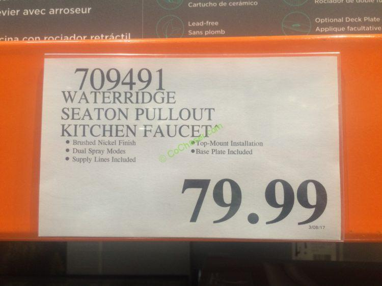 Water Ridge Euro Style Kitchen Faucet – CostcoChaser