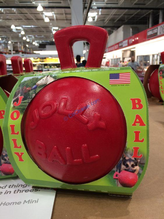 "Jolly Ball Canie & Equine Style 8"" Toy"