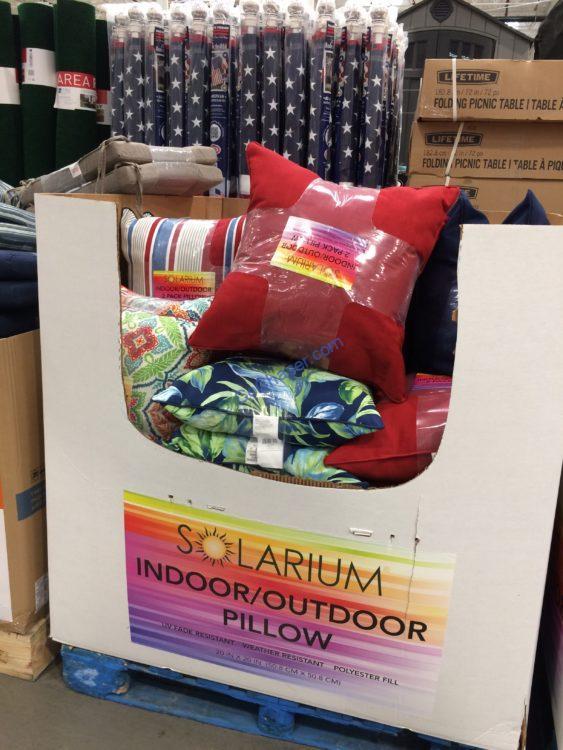Solarium Indoor Outdoor Pillow 20 X