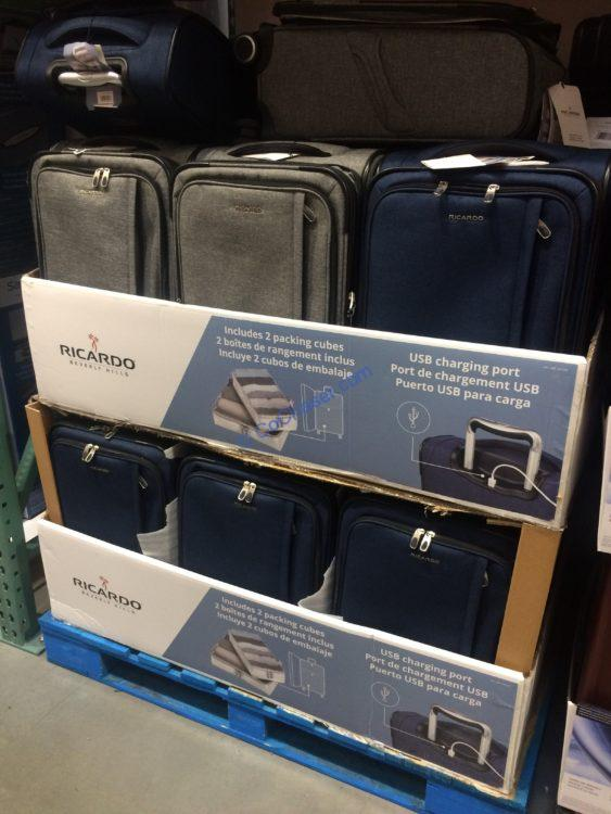 Ricardo Camden Drive Softside Carry-On with Packing Cubes