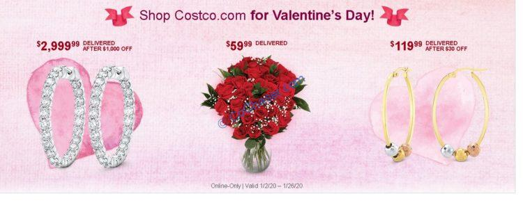 Costco-Coupon_02_2020_3