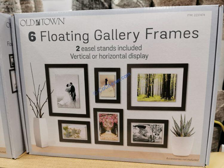 Old Town 6PC Floating Picture Frames