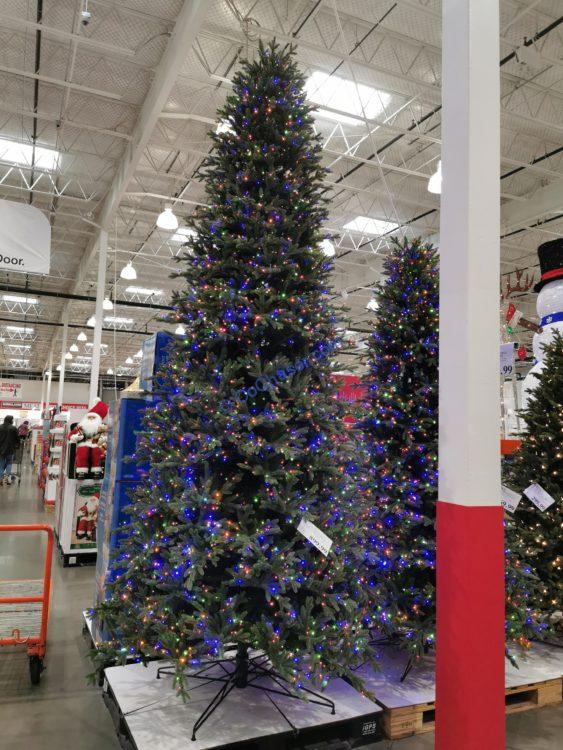 12' Pre-Lit Christmas Tree with 4430 Radiant Micro LED Lights
