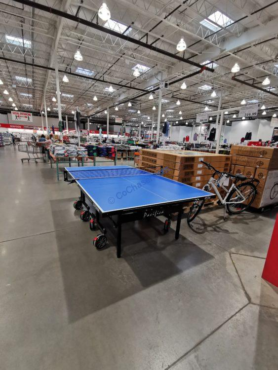 Pacifica Indoor/Outdoor Table Tennis